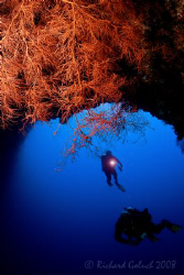 Blue Holes-Palau 2008 by Richard Goluch 